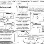 CIRCUITO DE ACONDICIONAMIENTO FÍSICO GENERAL SESIÓN 1