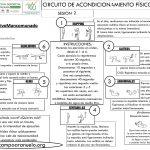CIRCUITO DE ACONDICIONAMIENTO FÍSICO GENERAL Sesión 2